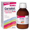Carnabol Kids Suspensão Oral Pediátrico 120mL